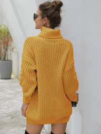 Women's Heavy Needle Pullover Mid-Long Turtleneck Twist Knit Sweater