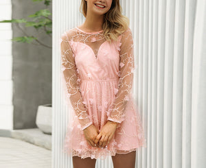 Sexy Embroidered Mesh Gauze Dress