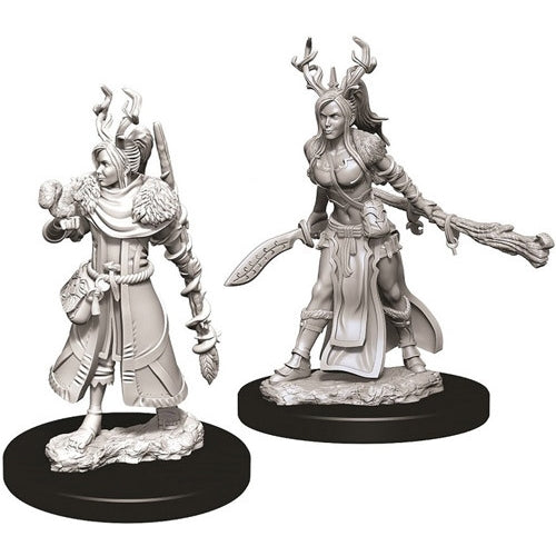 Human Female Druid (2) - D&D Miniatures-RedQueen.mx