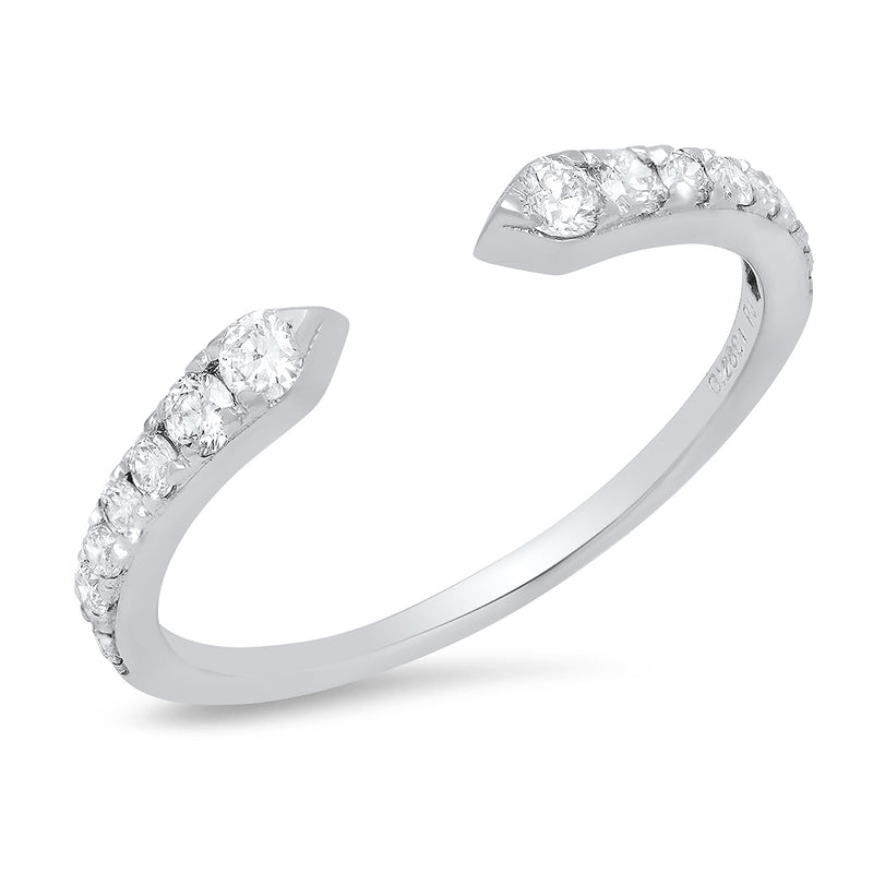 Open Pointed RIng