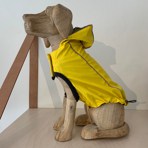 Reversible Yellow Dog Raincoat