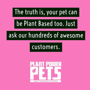 Your Pet Can be Plant Based too