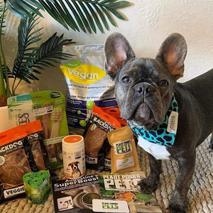 Try a Vegan Dog Food Starter Pack Today!