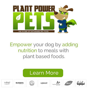 Plant based food will enhance a dog's diet
