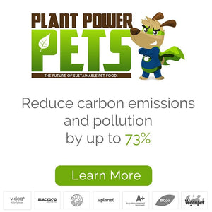Reduce Carbon Emissions and Pollution by up to 73%