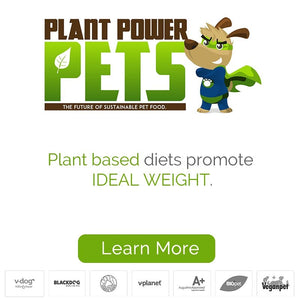 Plant based diets promote ideal weight for your dog.