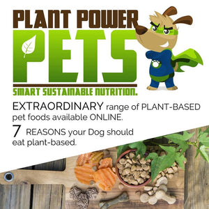 7 Reasons your Dog Should Eat Plant-Based