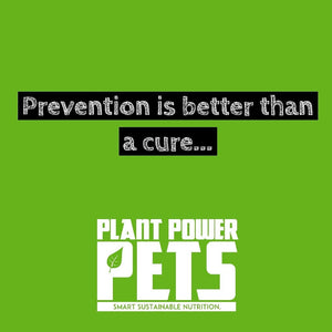 Prevention is better than a cure.