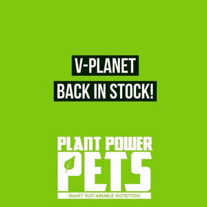 V-Planet is back in Australia
