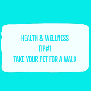 Take your pet for a walk!