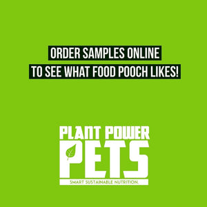 Vegan Dog Food Samples Online