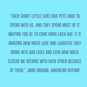 John Grogan Quote