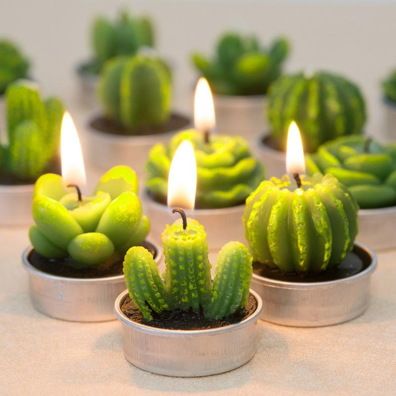 12PCS/set Home Decor Cactus Candle