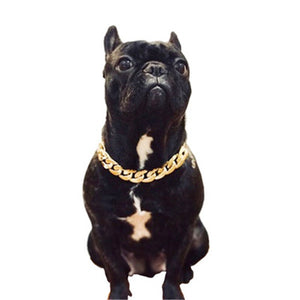 Teddy Bago law fighting dog bully gold chain small and medium dog collar pet necklace jewelry accessories Hot