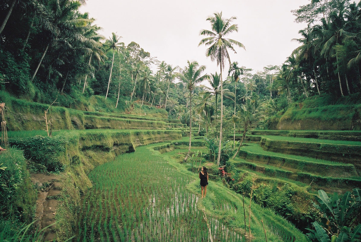 Ashley in the rice terraces in Bali.