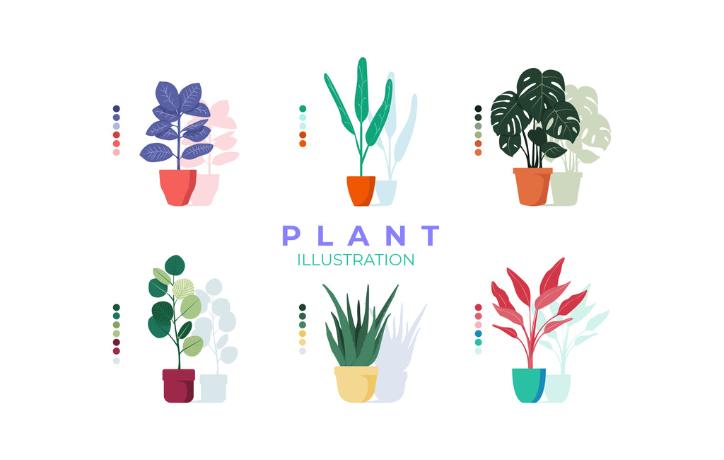 Colorful Plant Illustration