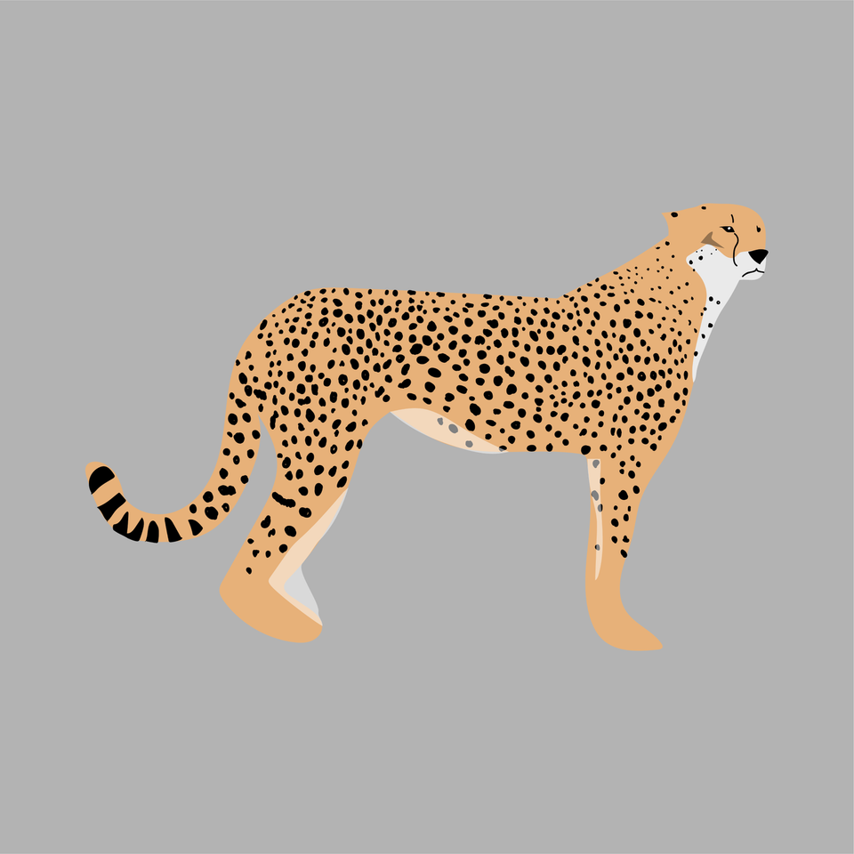 animals vector illustration flat tiger