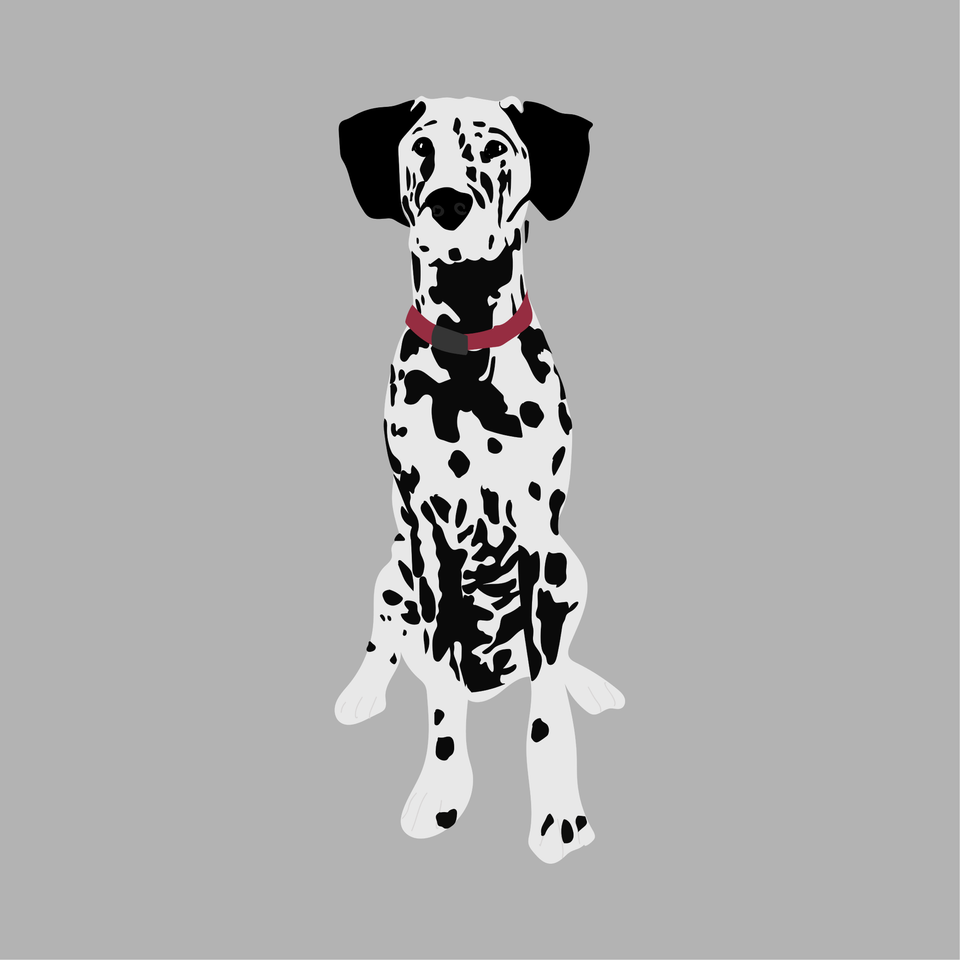 animals vector illustration flat dog dalmatian