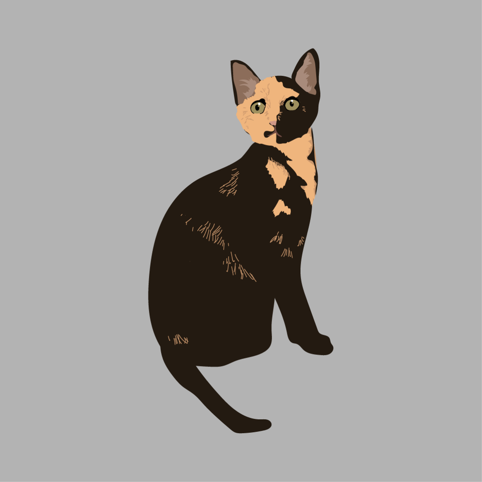 animals vector illustration flat cat