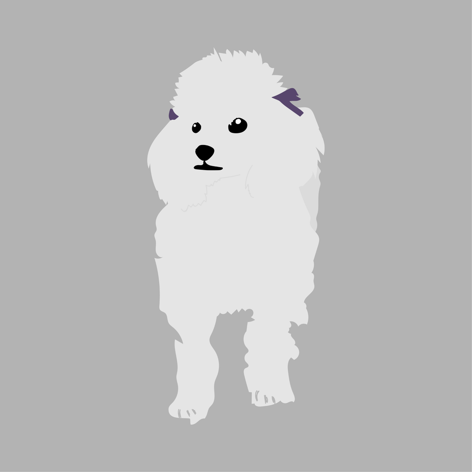 animals vector illustration flat dog fluffy