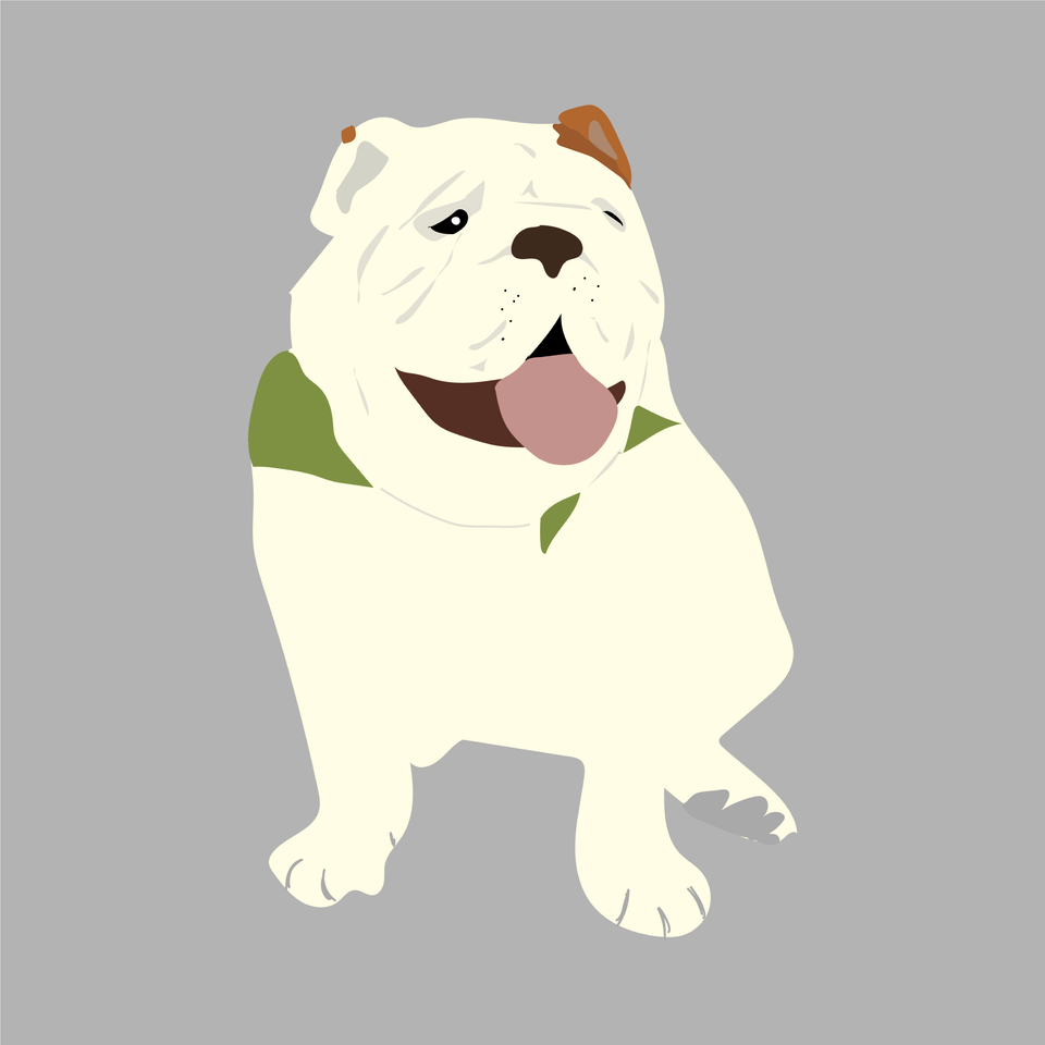 animals vector illustration flat dog