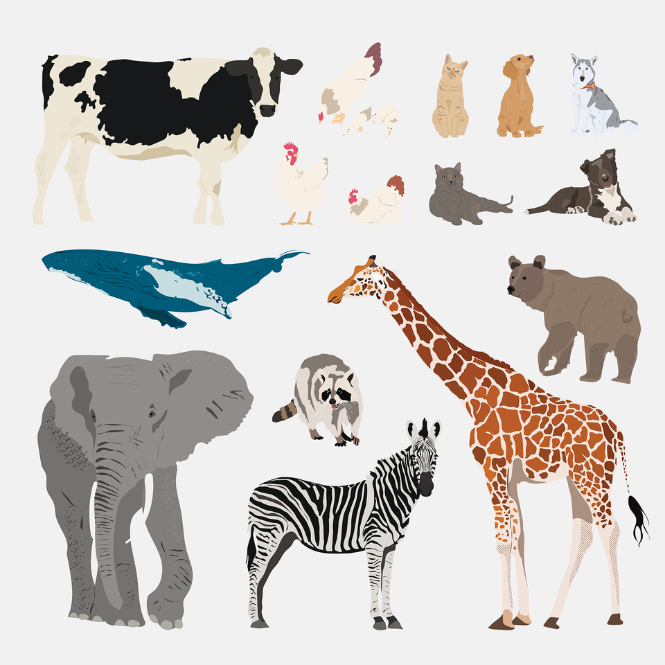 Vector Animals Pack 01