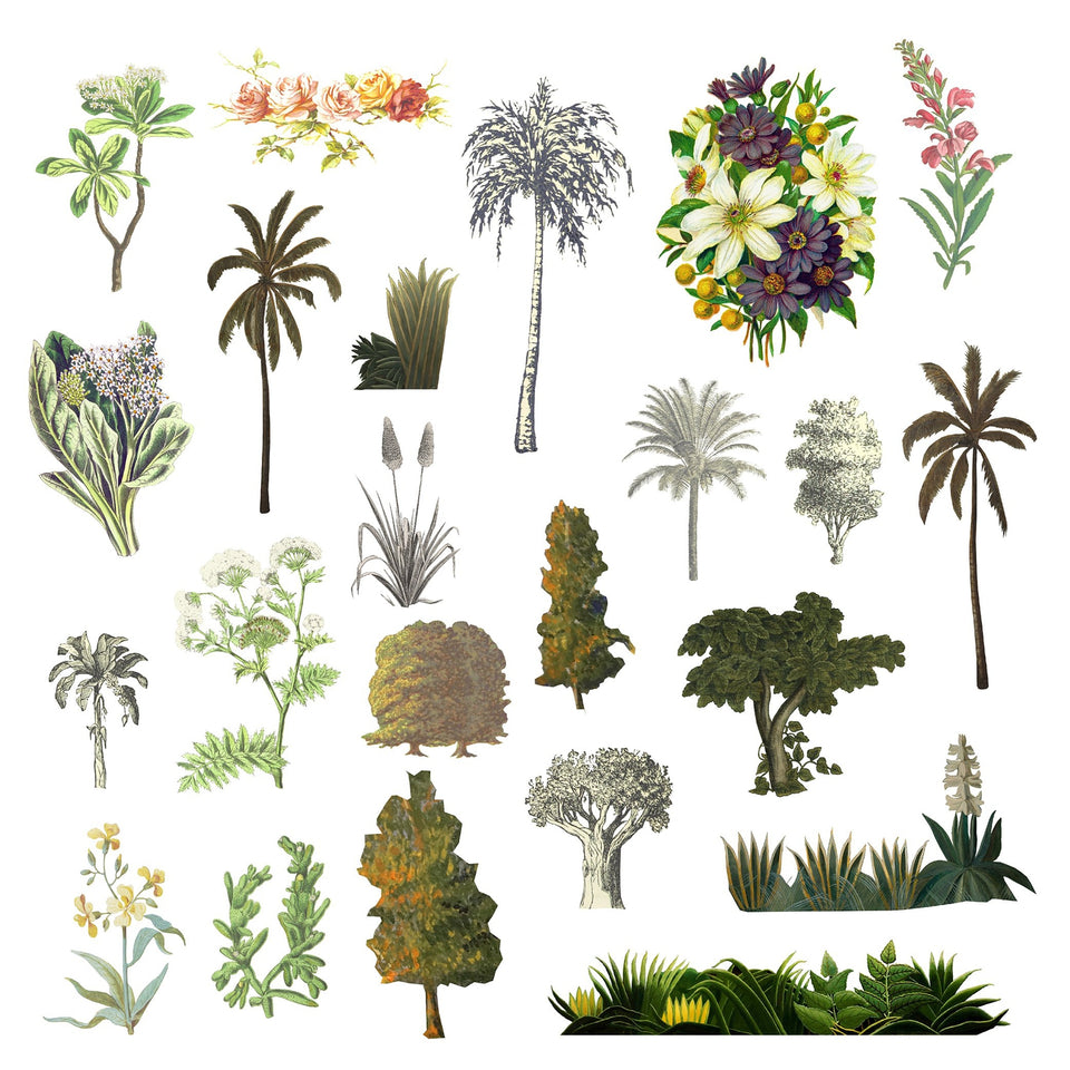 Vegetation Cutouts (45 PNGs)-Cutouts-Studio Alternativi