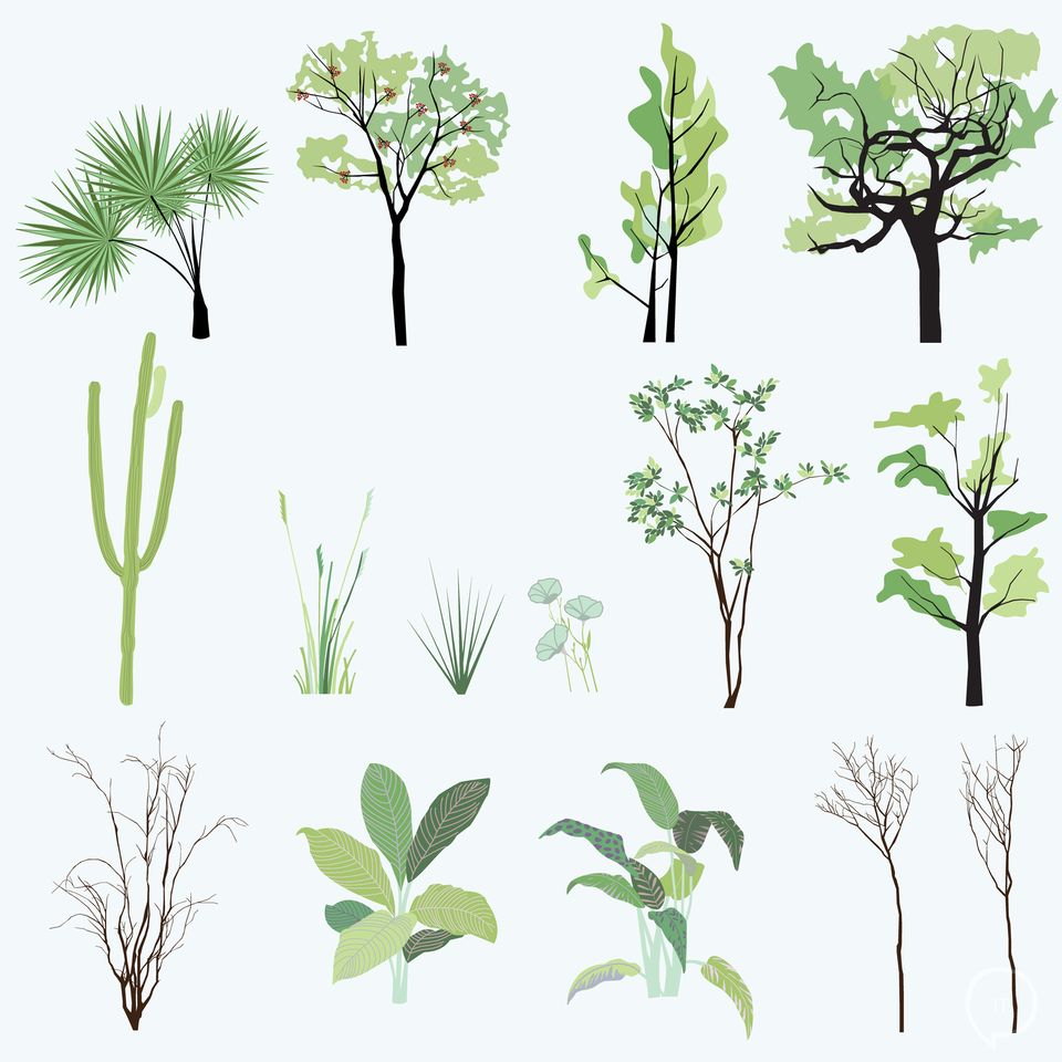 Vector Plants and Trees-Vectors-Studio Alternativi