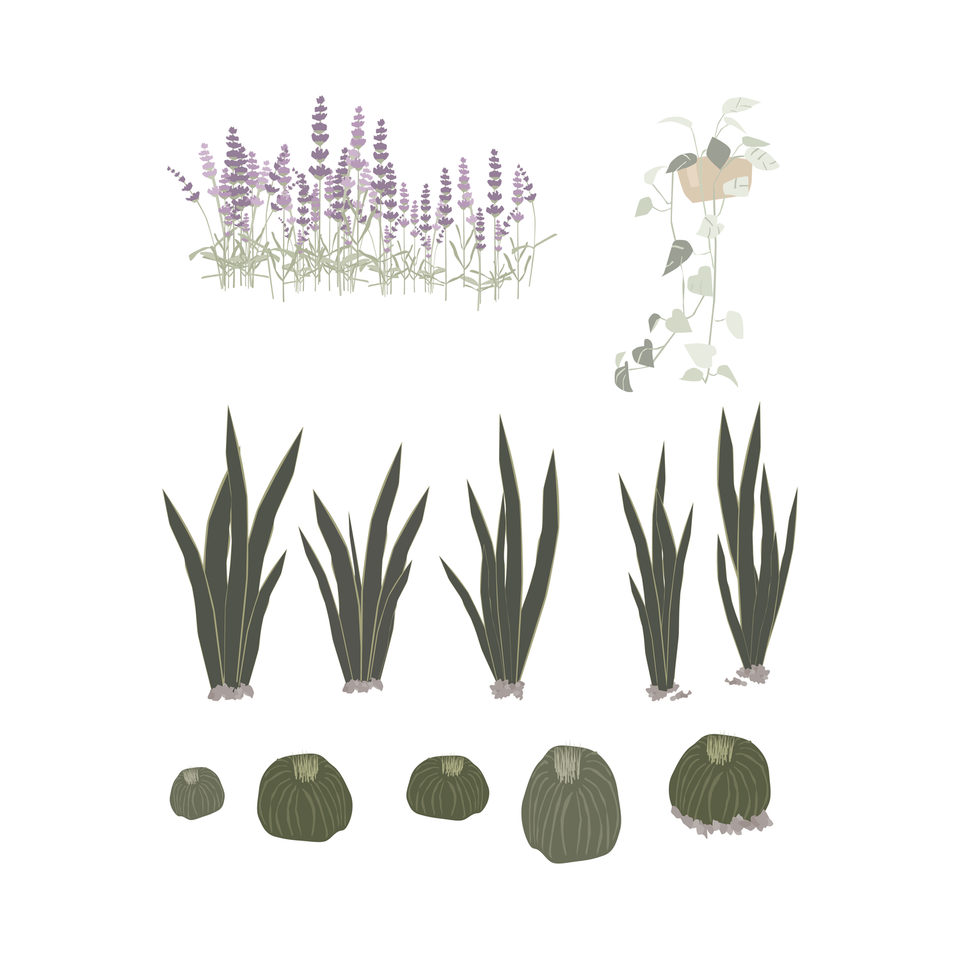 wild plants png vector