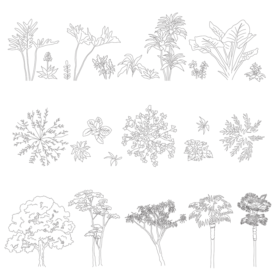 vector plants trees cad blocks