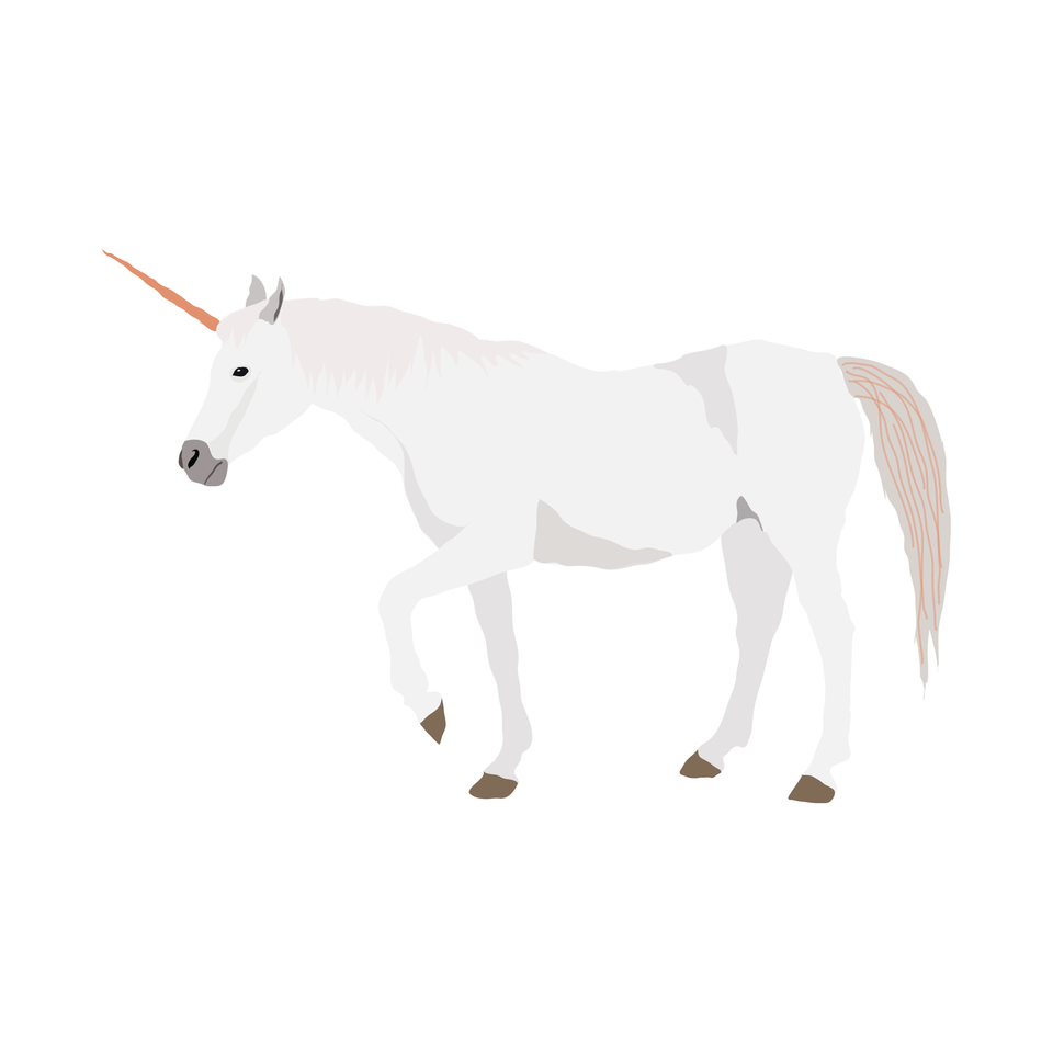 vector unicorn