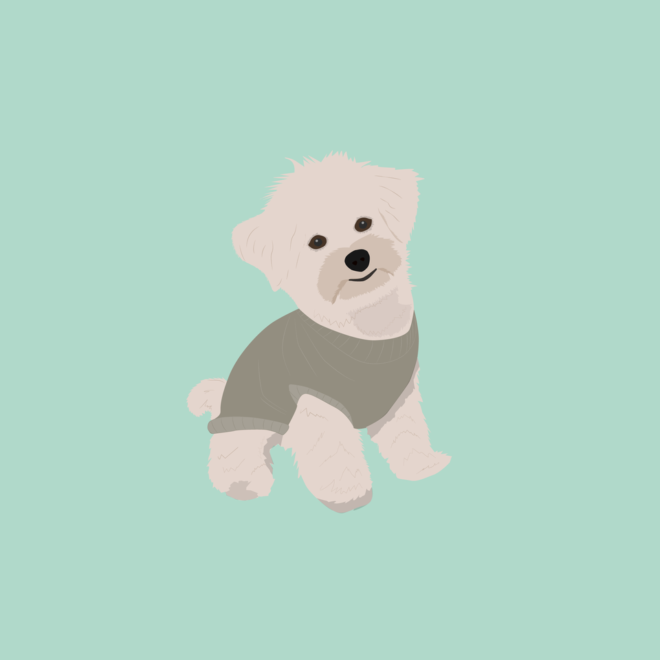 flat vector dog puppy