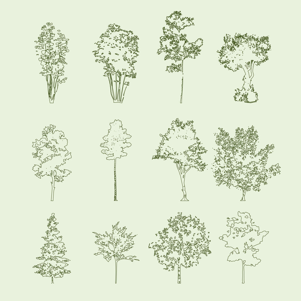 Vector Trees in Plan and Elevation (56 Trees)