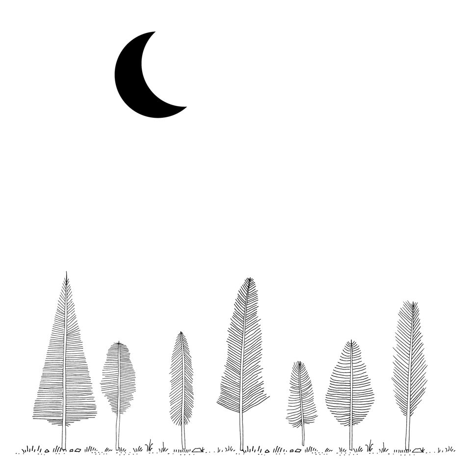 Feather Trees Vector Set (FREE)