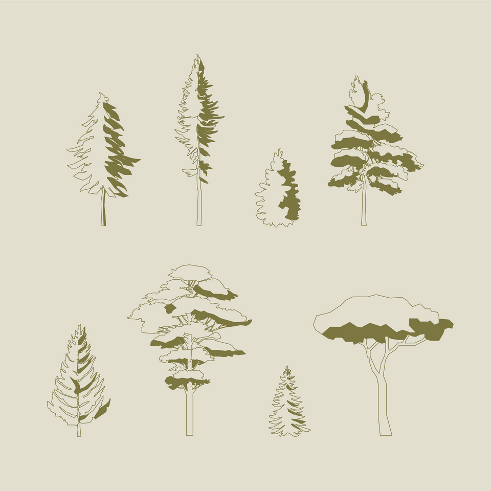 vector pine trees free download