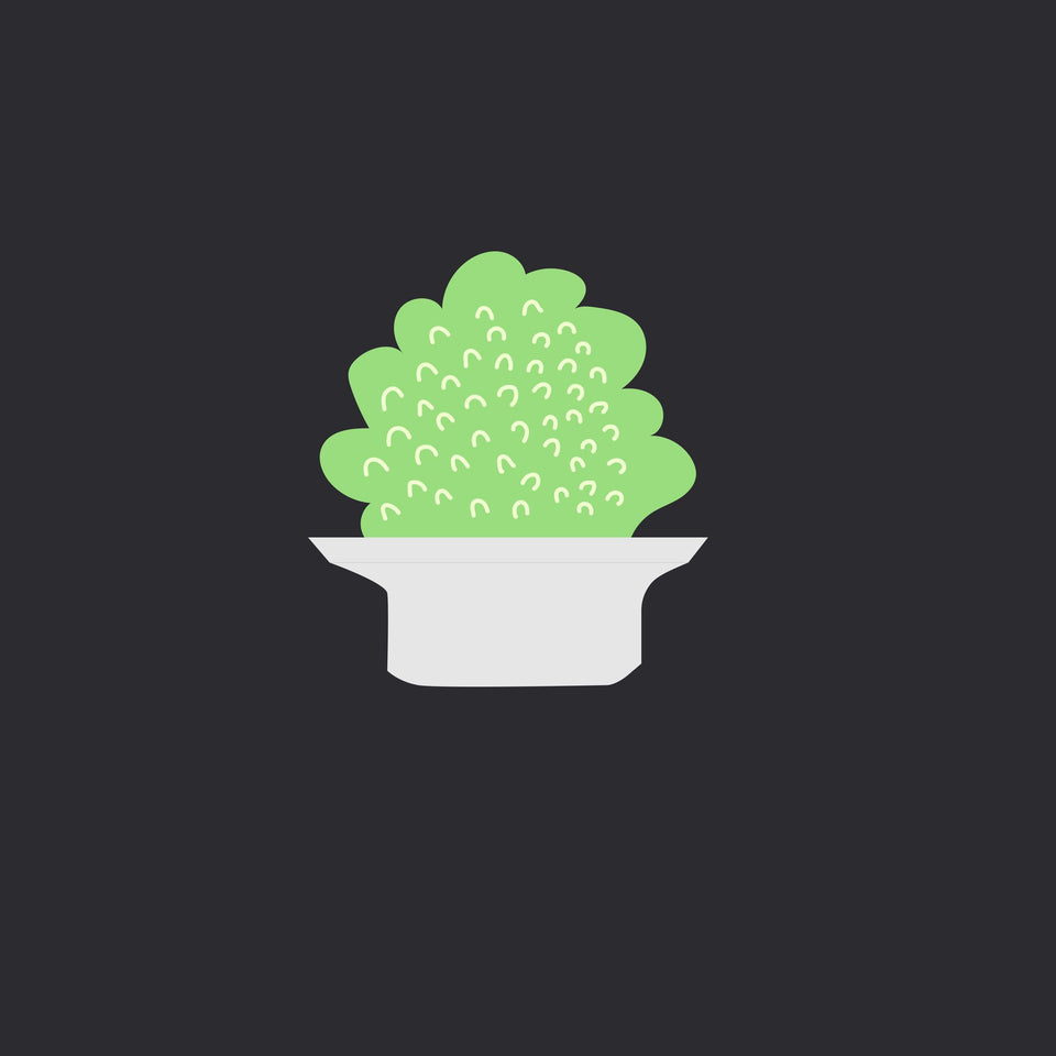 Plants Illustrations (10 Plants)-Vectors-Studio Alternativi