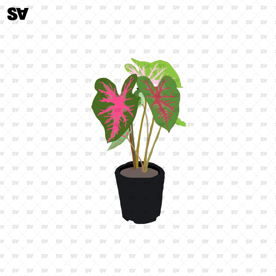 potted plants flat vector