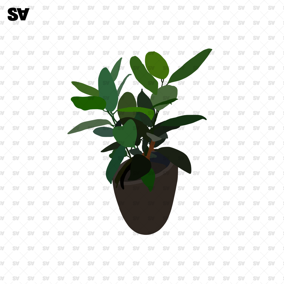 png plants for photoshop