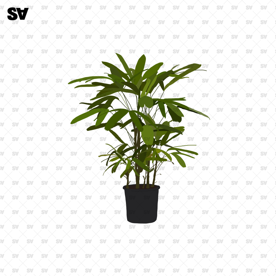 flat vector potted plants