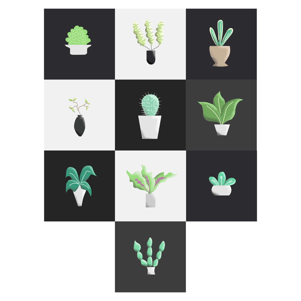 Vector plants illustrations