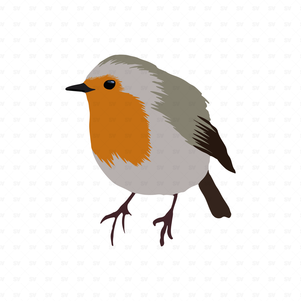 png vector bird