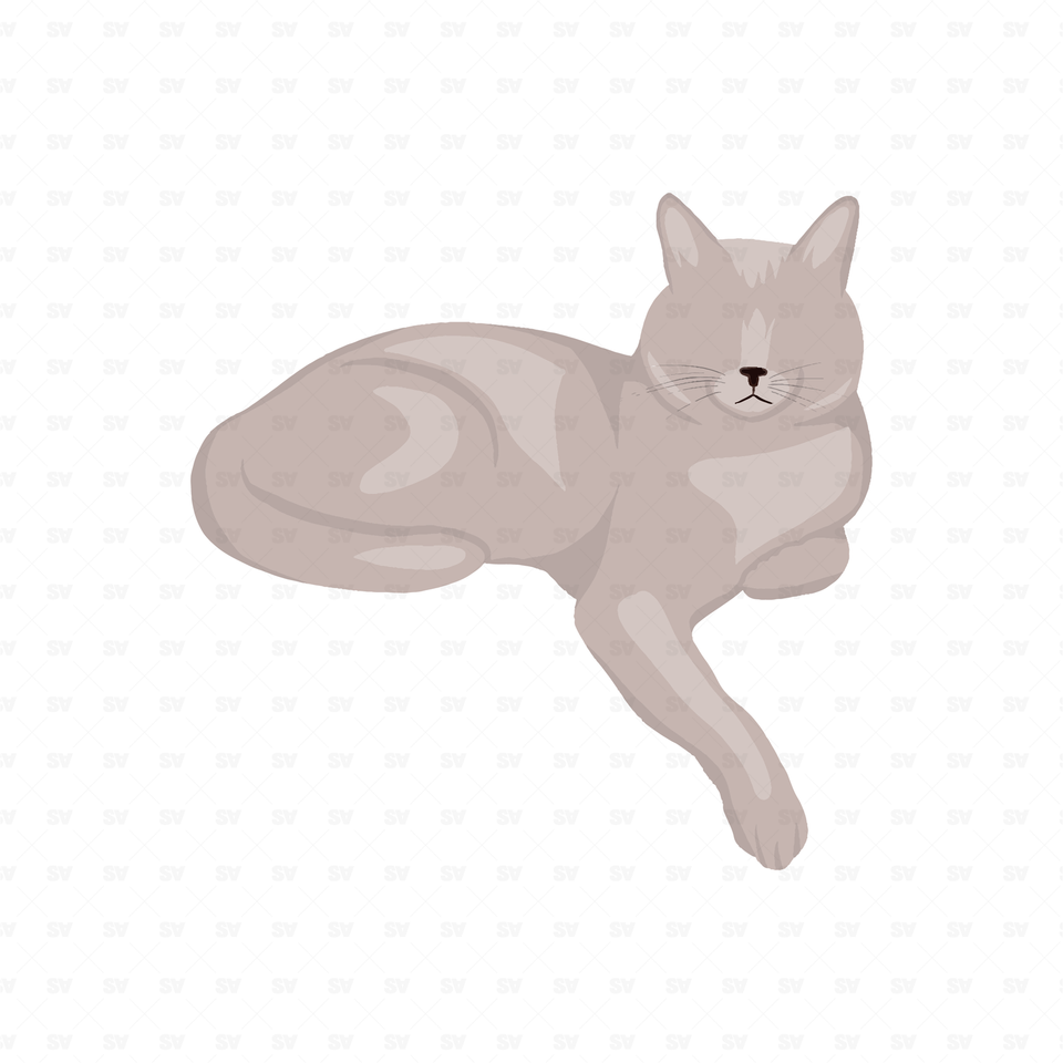 png vector cat