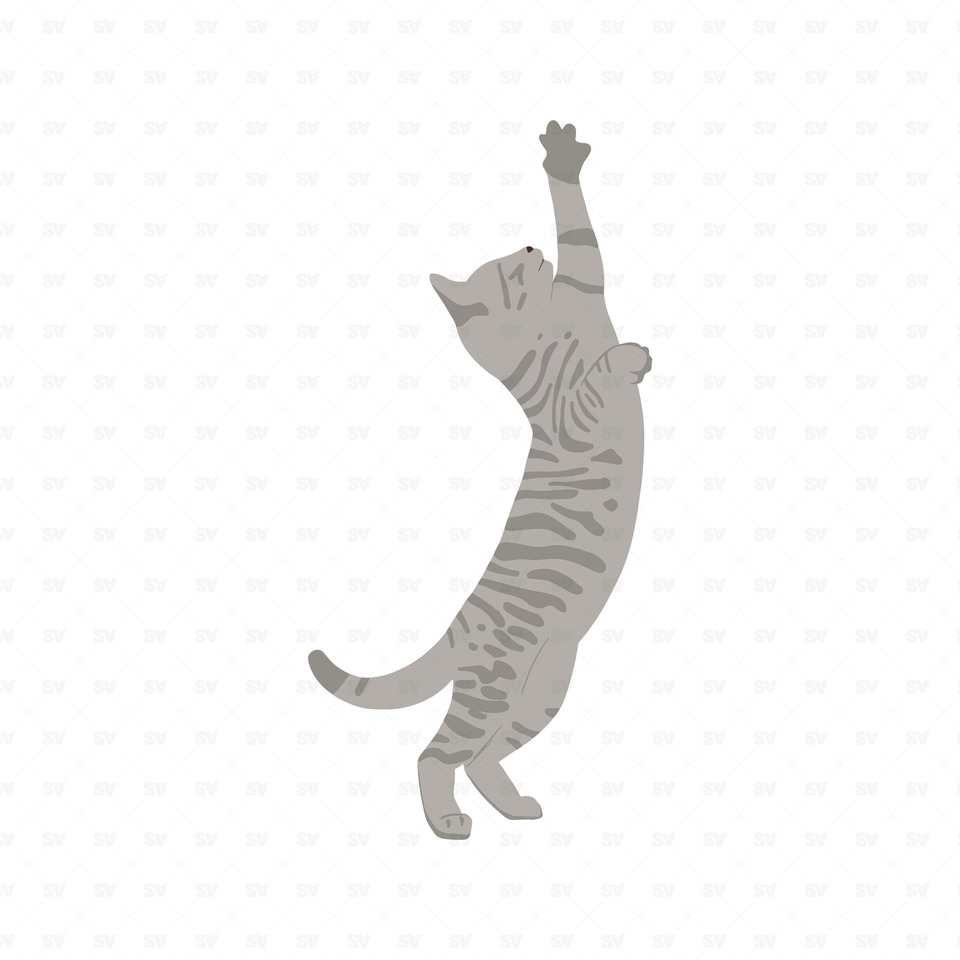 png vector climbing cat