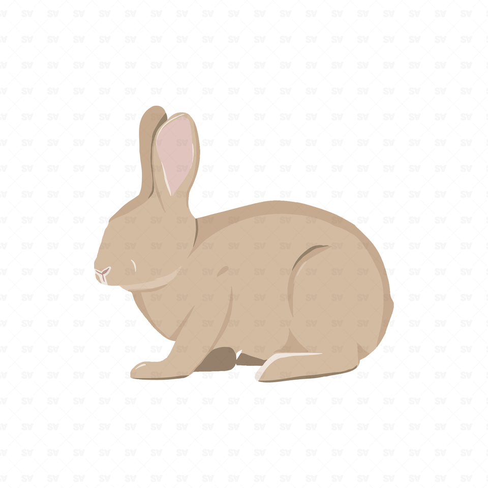 png vector rabbit