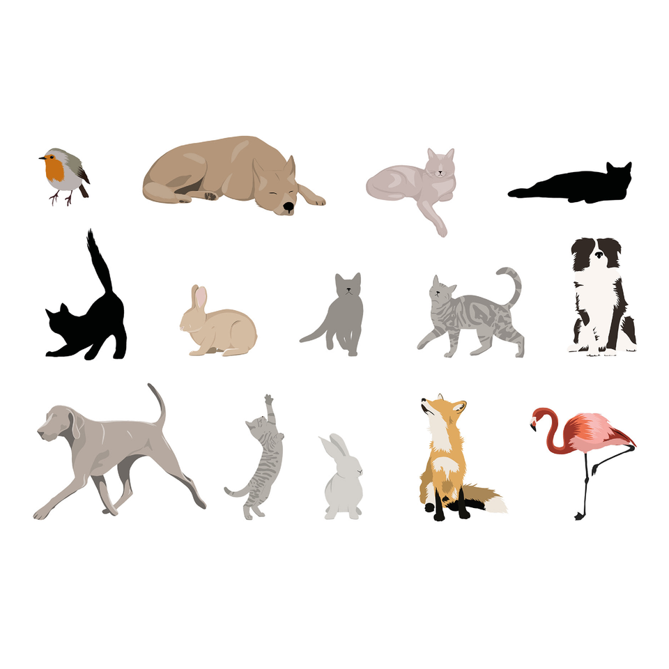 flat vector animals illustrations