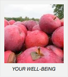 your-well-being.pic