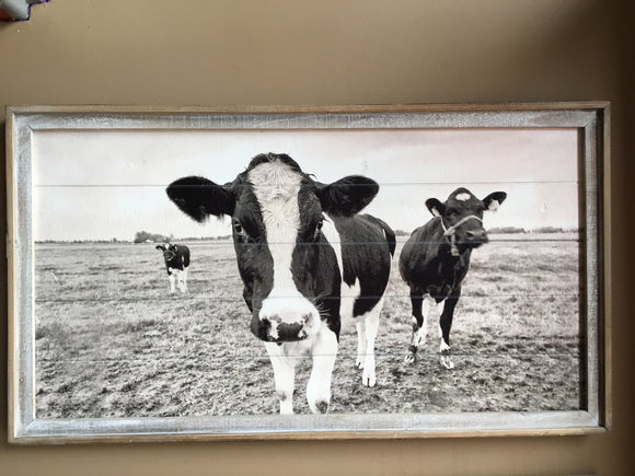 Framed weathered cow print