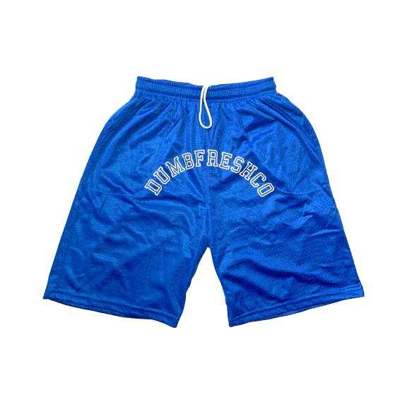 Lounge basketball shorts | blue - Men's Clothing
