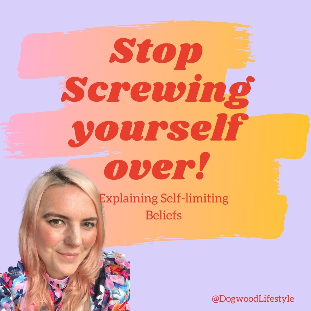 Graphic with text 'stop screwing yourself over' identifying self limiting beliefs