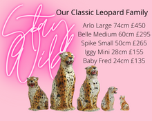 Load image into Gallery viewer, NEW 'Spike' Small Ceramic Leopard Cub Statue